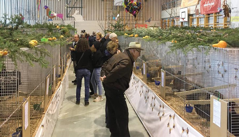 La Minute nature : Ils ont participé à la cantonale d'aviculture
