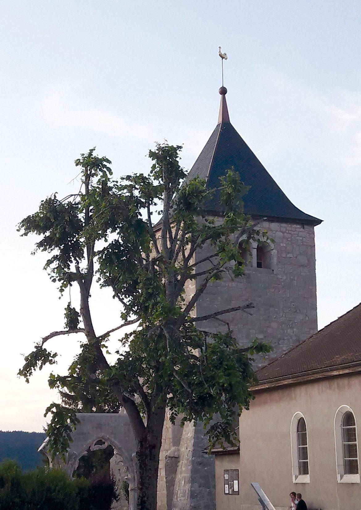 La Tour de L'Abbaye au centre  d'un nouveau projet